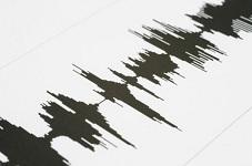 earthquake squiggles