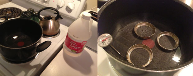 Step 1: water and vinegar