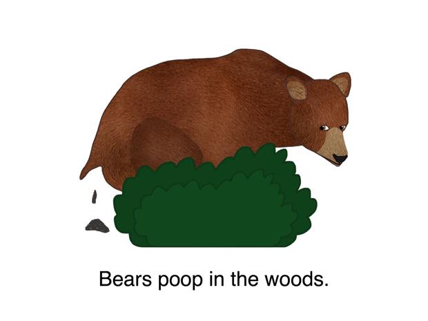 bears poop in the woods