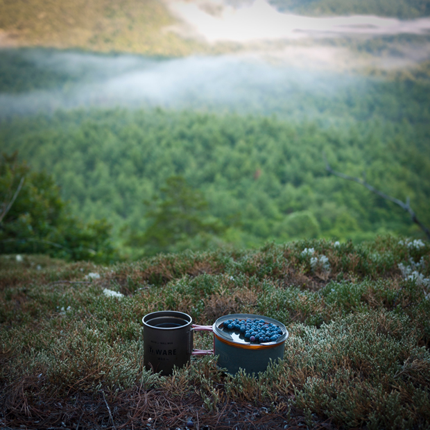 coffee and blueberries