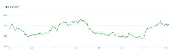 Pickle Run elevation profile