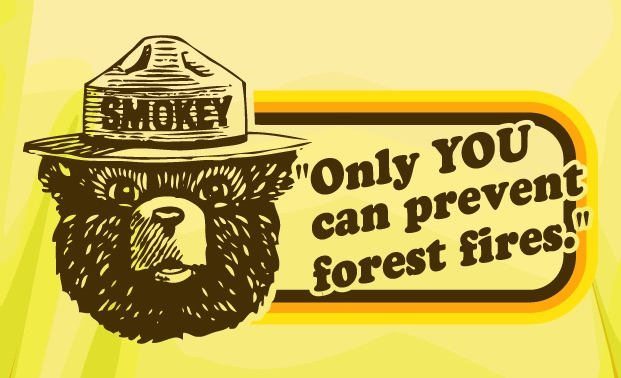 smokey the bear says only you can prevent forest fires