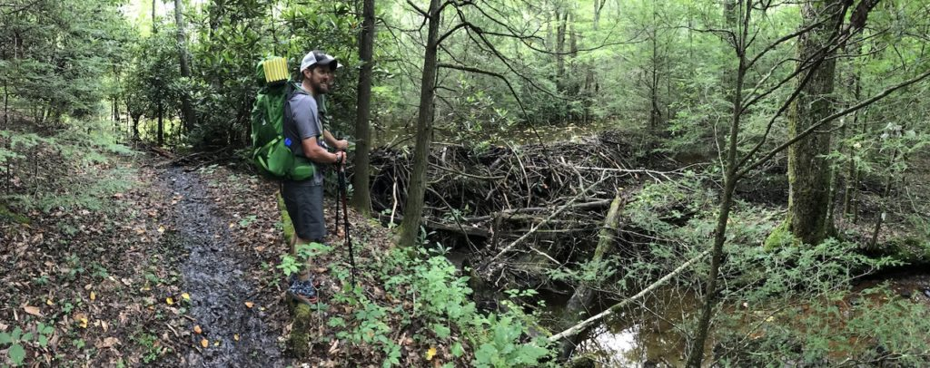 two hikers next to a beaver dam