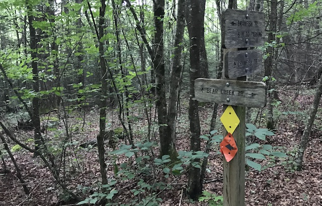 Bear Creek / CCR intersection trail sign