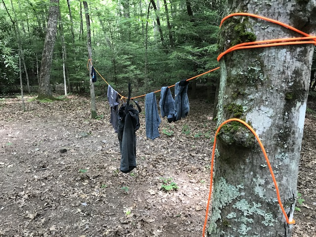 clothesline in the woods