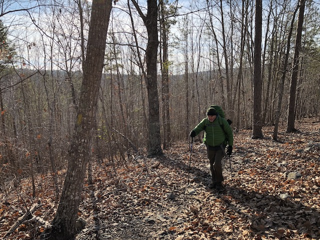 hiker in woods going up a hill with poles